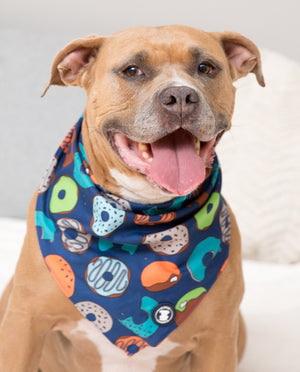 Brown Pit bull wearing a navy donut bandana and smiling I Pittie Clothing Co.
