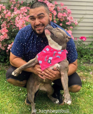 Pit bull wearing her bandana and kissing her dad I Pittie Clothing Co.
