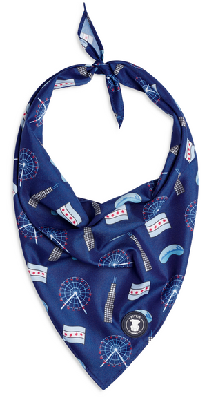 Navy Chicago Bandana