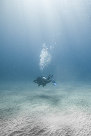 Scuba Diver in Clear Water with Sandy bottom in Lord Howe Island