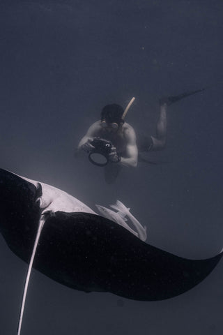 Me swimming with rolling manta ray