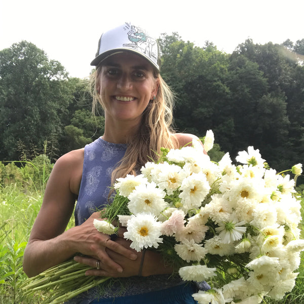 Rachel at Good Flower Farm Nashville Joelton, Tennessee - Organic Flowers: Double Click Snowpuff Cosmos