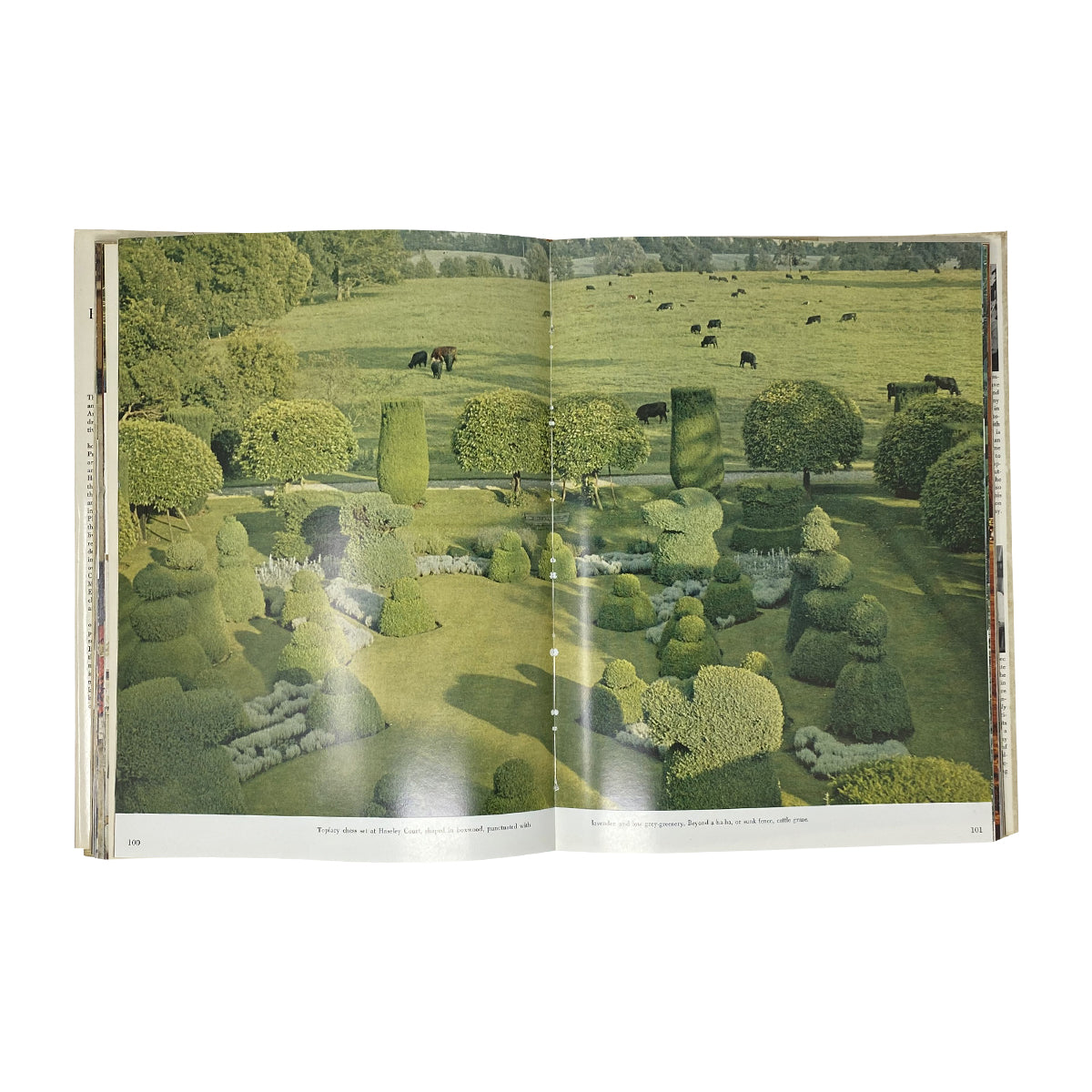 Vogue's Book of Houses, Gardens, People - Flamingo Estate