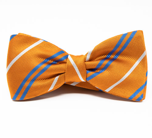 Absolutley Delicious Bow Tie - Premium Youth Size - Pre-Tied