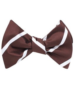 Brown and white striped bow tie tied view