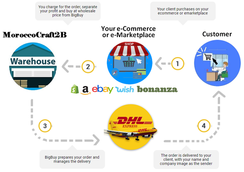 schema dropshipping explained by moroccocraft2B
