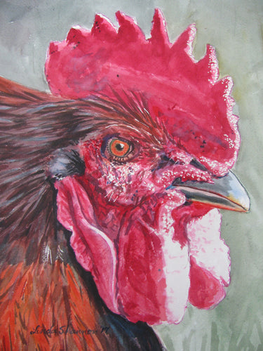 Watercolor painting of rooster face