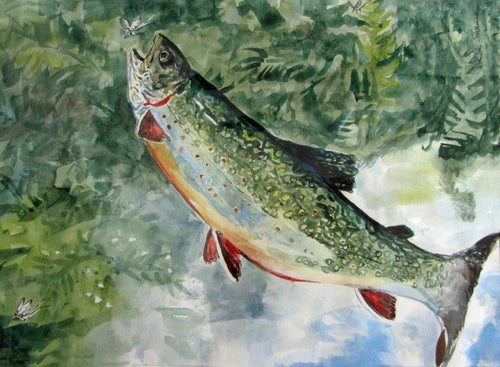 Watercolor painting of rainbow trout leaping for a mayfly