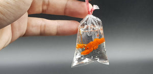Miniature Lobster in Plastic Bag