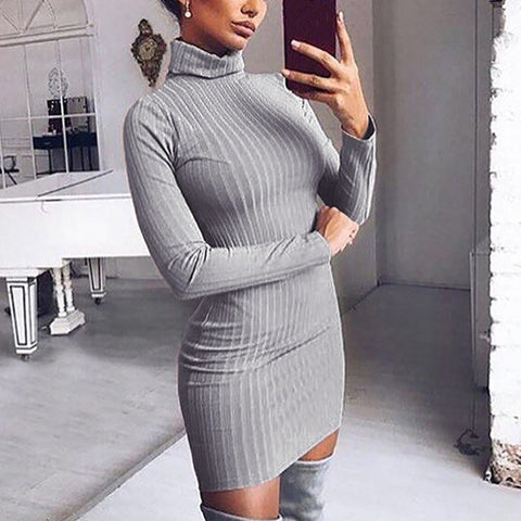 High Neck  Inverted Pleat  Bust Darts  Plain Bodycon Dresses