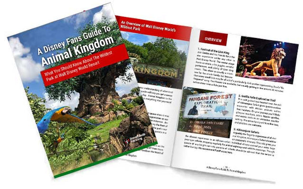 A Disney Fans Guide To Animal Kingdom