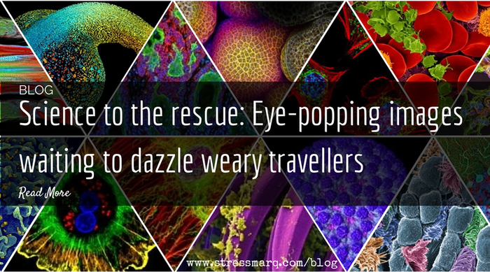Science to the rescue: Eye-popping images waiting to dazzle weary travellers