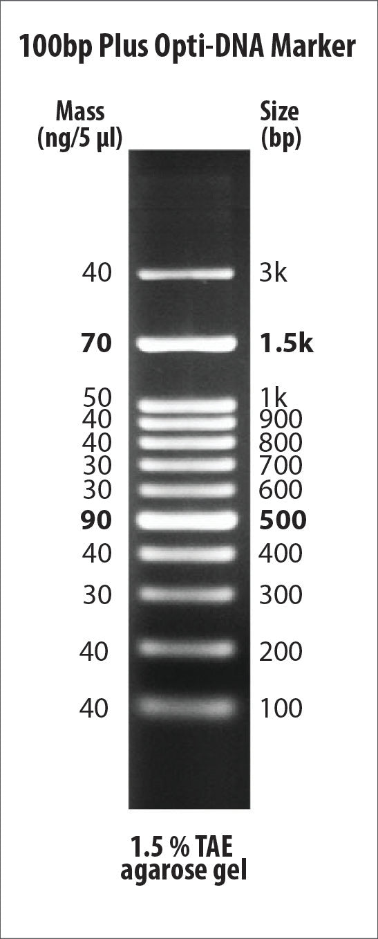 100bp Plus Opti-DNA Marker
