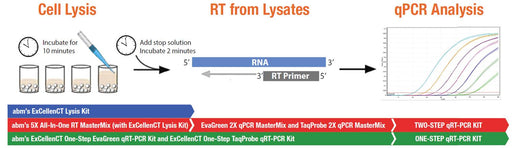 ExCellenCT One-Step TaqProbe qRT-PCR-iCycler