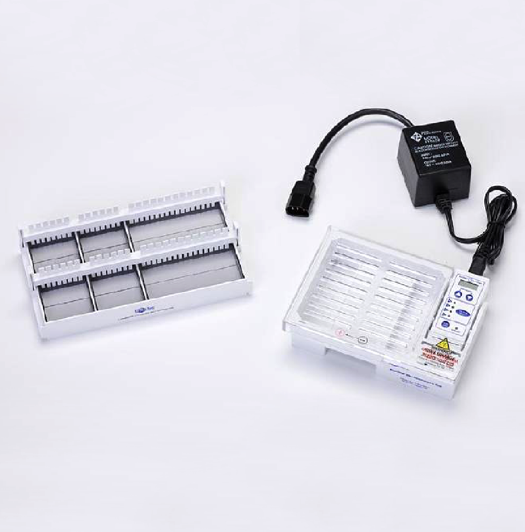 Gel Electrophoresis System with Time Control, 220-240 V