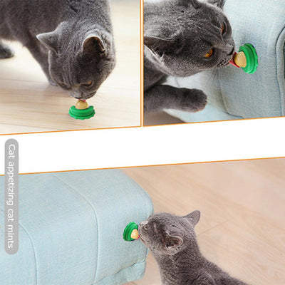 Catnip Wall Ball