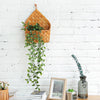 Evalyn - Natural Wicker Wall Hanging Planter