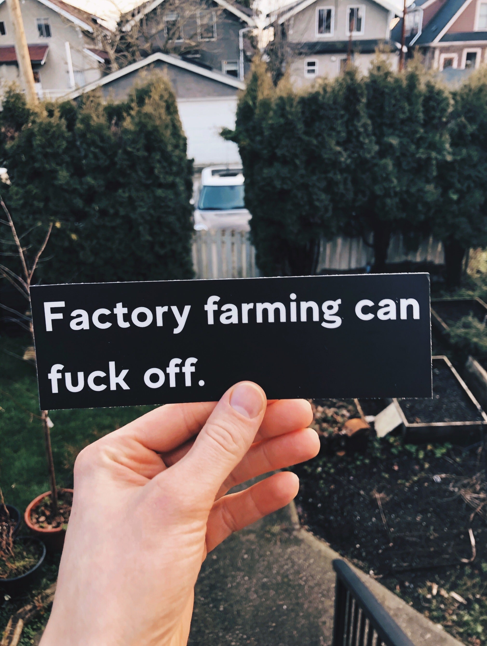 Factory Farming Can Fuck Off - Bumper Sticker