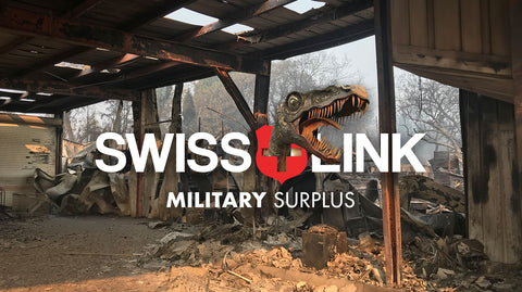 Swiss Link Camp Fire