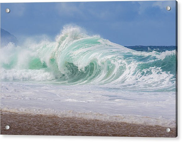 Hawaiian Shorebreak - Acrylic Print