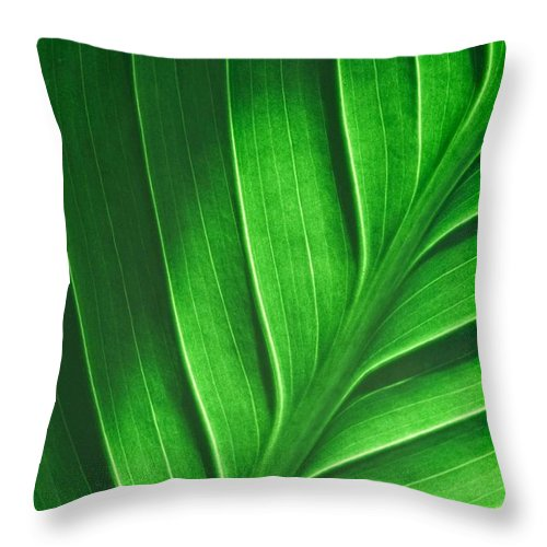Leaf Pattern - Throw Pillow