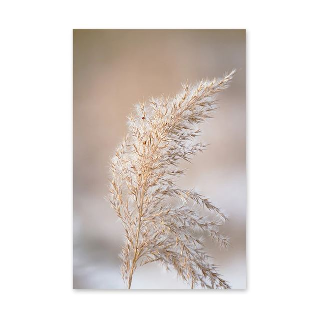 Brown Bulrush Series Canvas Art Prints