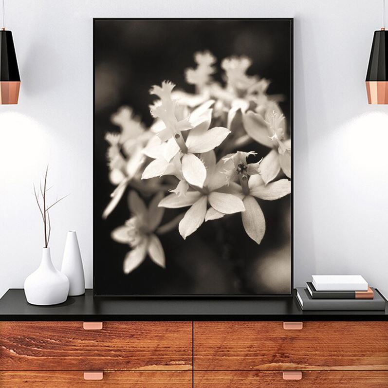 Beauty In The Darkness Black And White Flowers C Canvas Prints