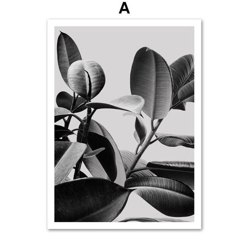 Black and White Monstera Leaves And Quotes Canvas Art Prints