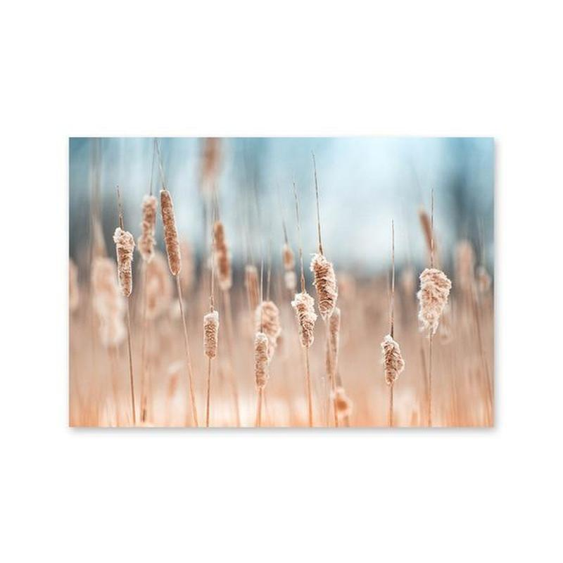 Brown Bulrush Series Canvas Prints-Heart N' Soul Home-10x15cm no frame-Picture G-Heart N' Soul Home
