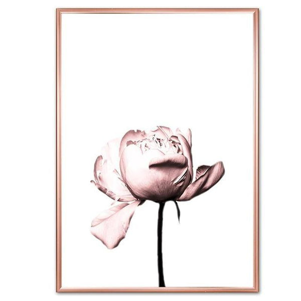 Dusty Pink Roses Canvas Prints-Heart N' Soul Home-13x18 cm no frame-A-Heart N' Soul Home