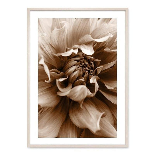 Flowers And Ballerina Canvas Prints-Heart N' Soul Home-13x18 cm no frame-Picture D-Heart N' Soul Home
