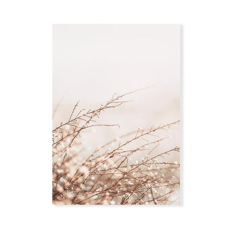 In The Breeze Bohemian Style Canvas Prints-Heart N' Soul Home-50x70 cm no frame-Pampas Grass-Heart N' Soul Home