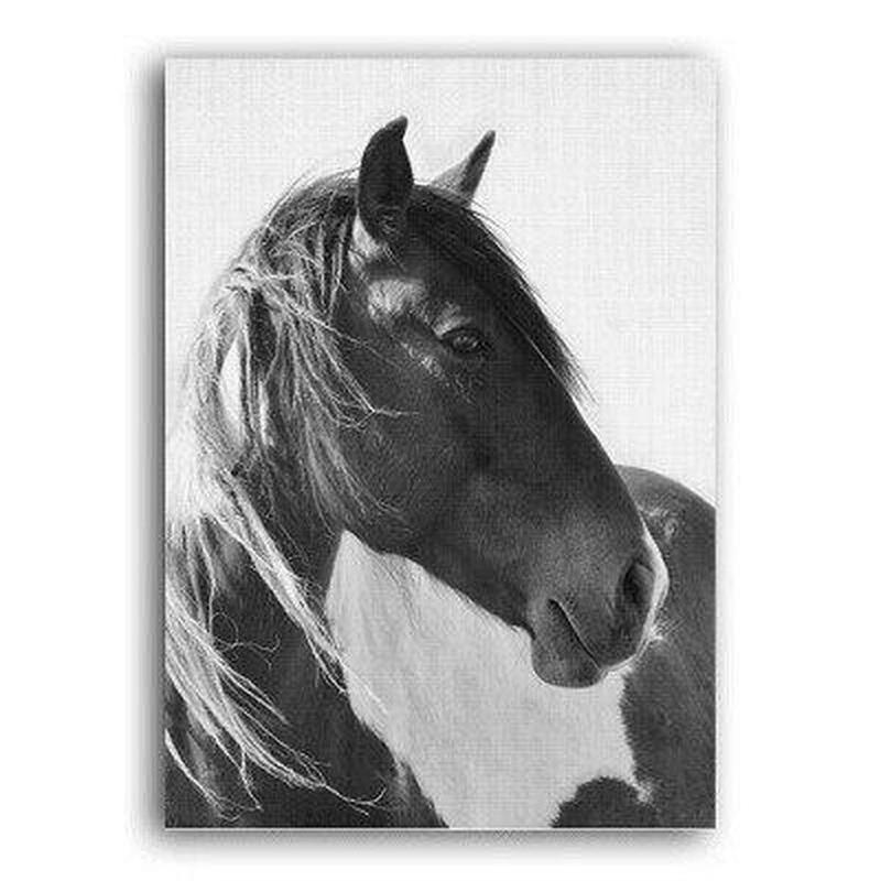 Nordic Black And White Wild Horse Canvas Print-Heart N' Soul Home-10x15 cm no frame-Heart N' Soul Home