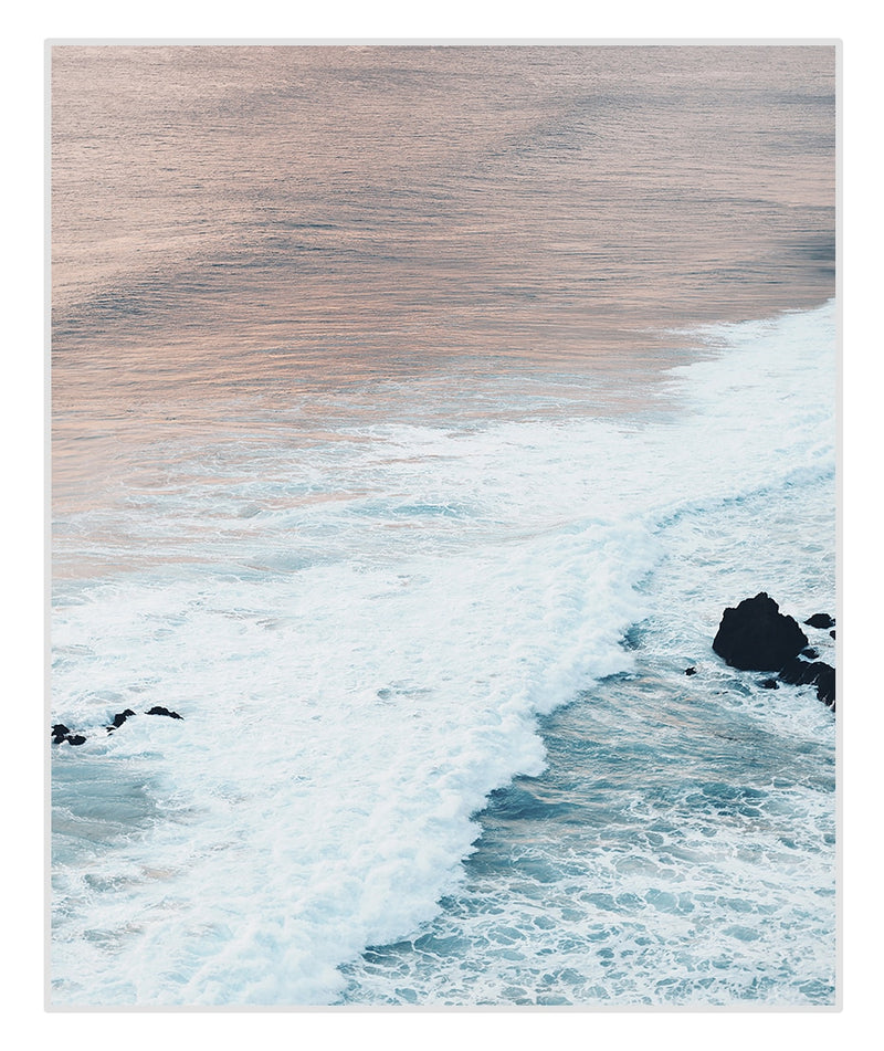Pink Ocean Waves And Dried Flowers Canvas Prints