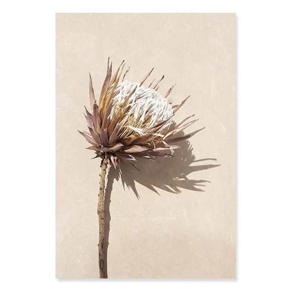 Bohemian Dried Protea And Leaves Canvas Prints