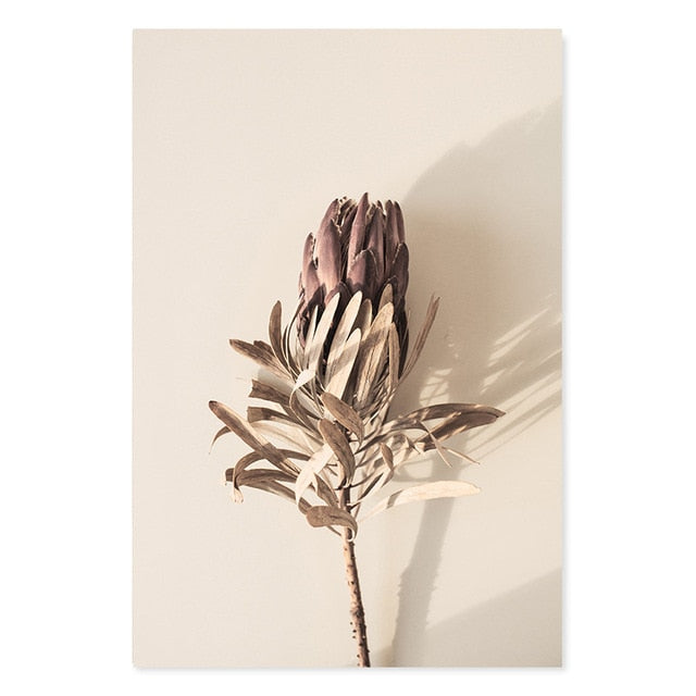 Bohemian Dried Protea And Leaves Canvas Print