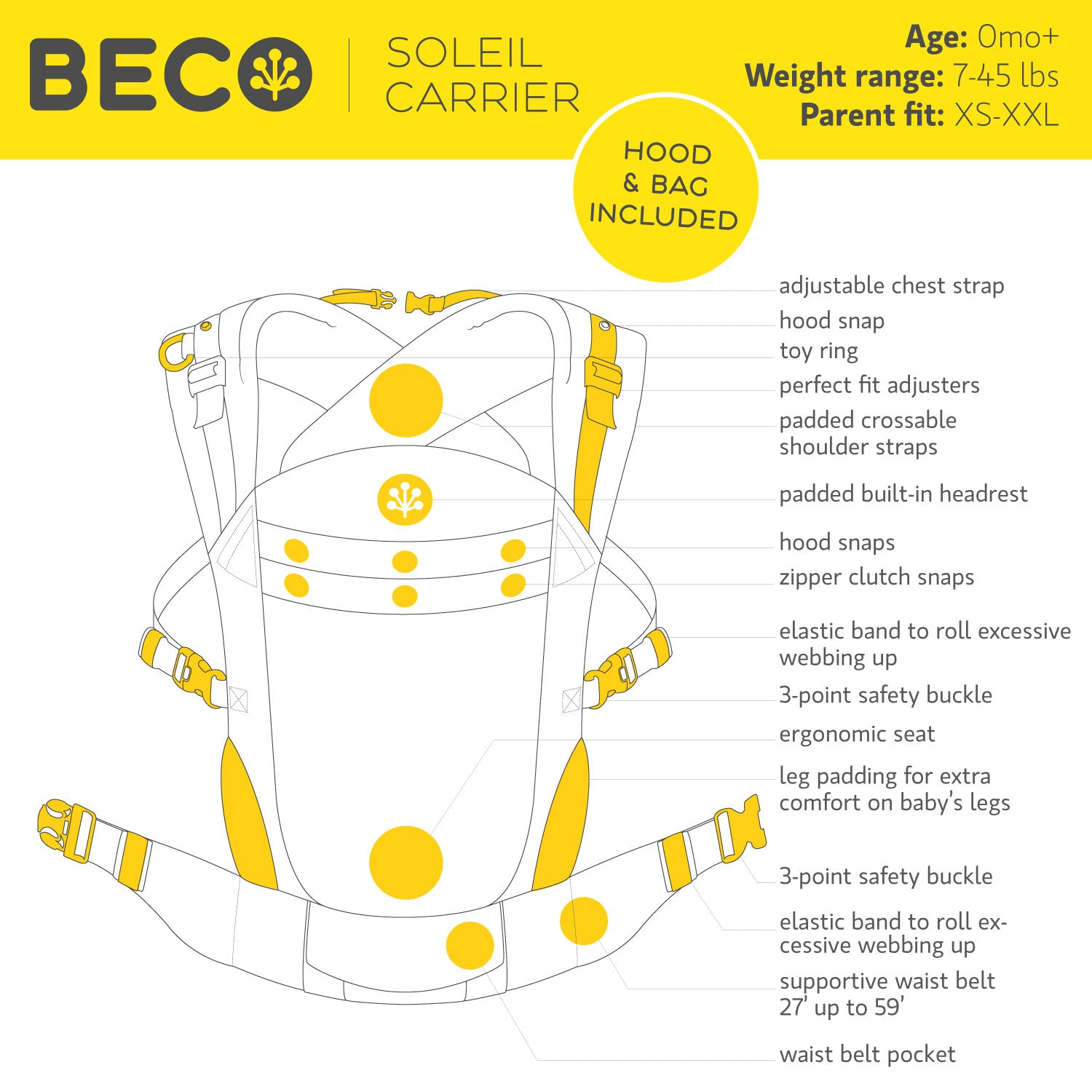 beco-soleil-graph