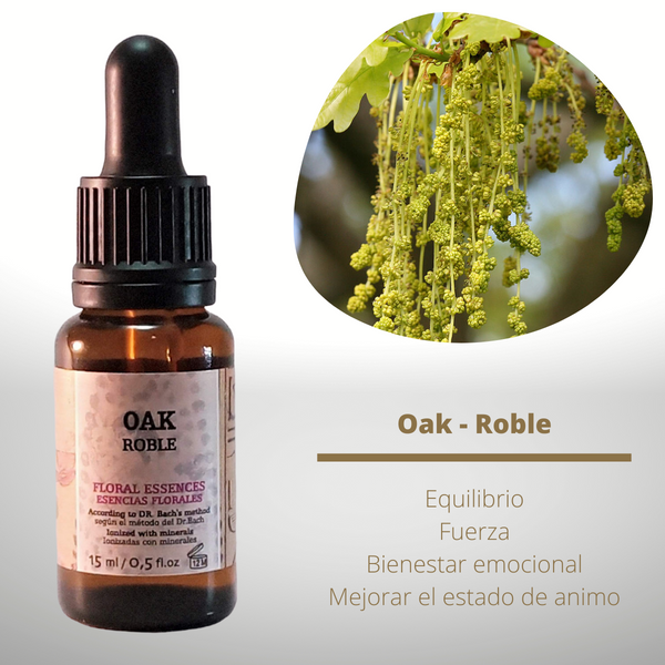Esencia floral de Oak (Roble)