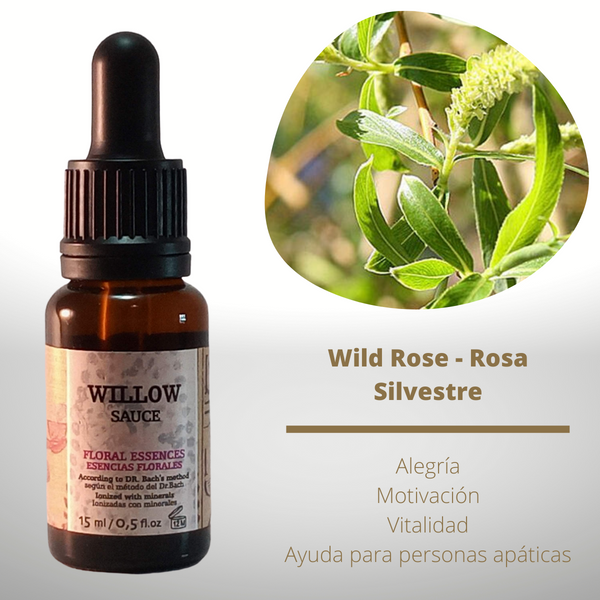 Esencia floral de Willow (Sauce)