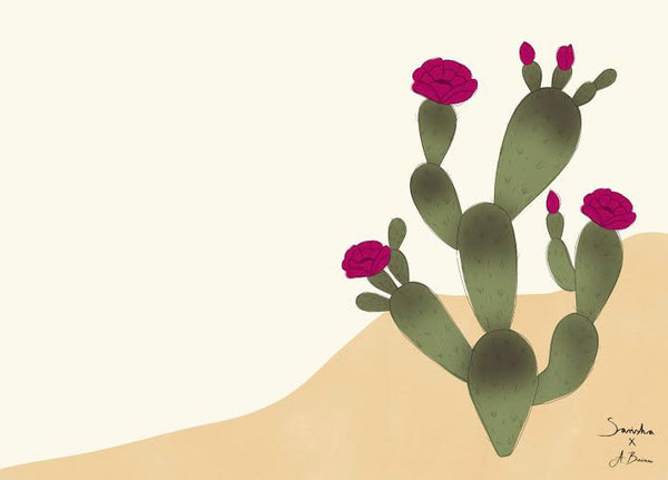 Ingredient Spotlight: Prickly Pear