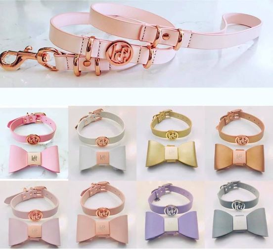 Shimmer & Shine Collection - Leather Collars/Leather Leads