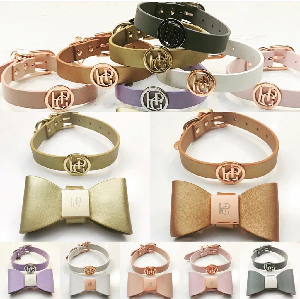 Leather Bow Collars - Shimmer & Shine