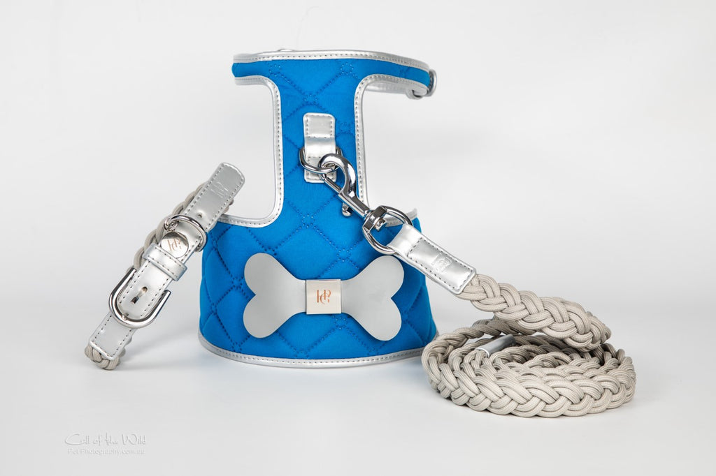 The 'Royal' Dog Harness