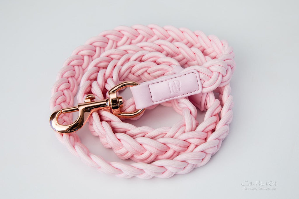 Dog Lead Pink Plaited