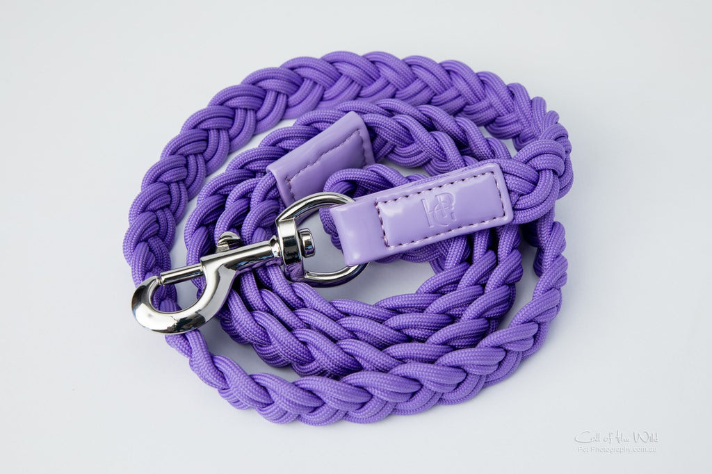 Dog Lead Purple Plaited