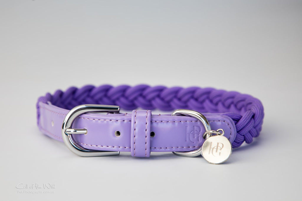 Dog Collar Violet Purple Plaited