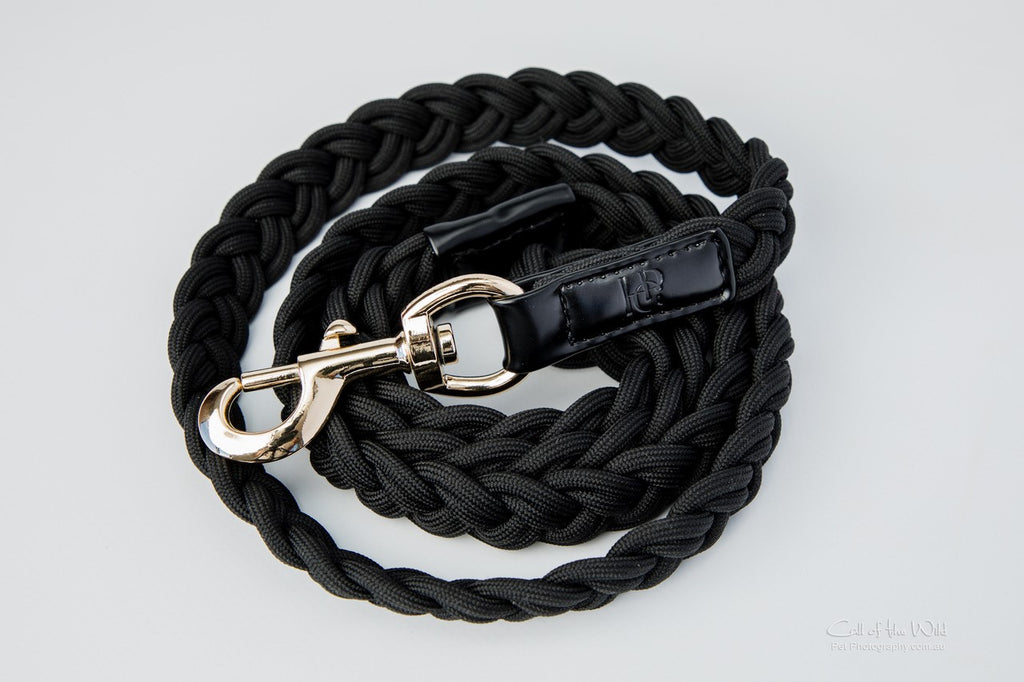 Dog Lead Black Plaited - Yellow Gold Hardware