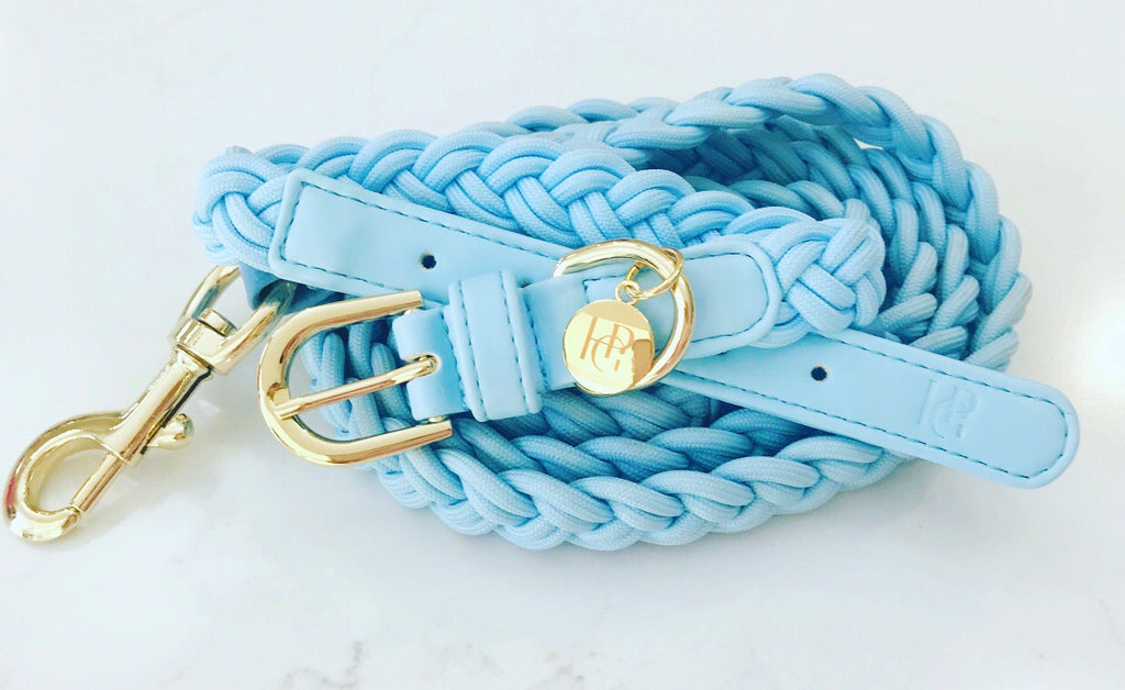 Dog Lead Cloud Blue Plaited