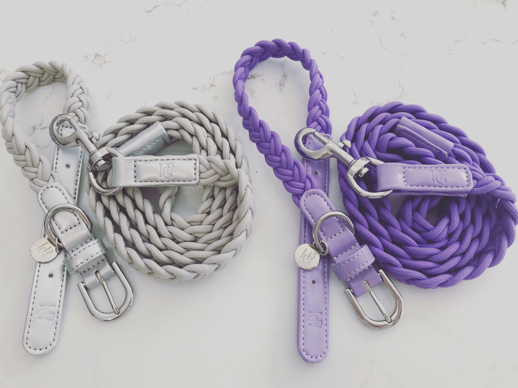 Dog Lead Grey Plaited
