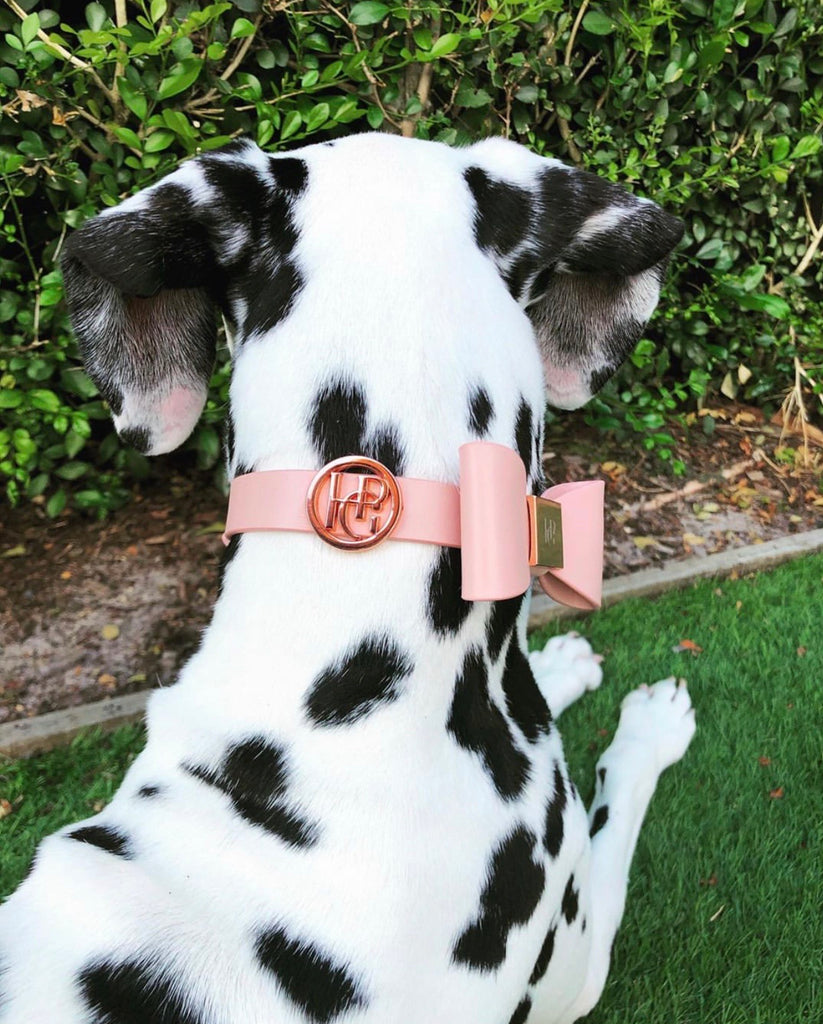 Leather Bow Collar - At Dusk